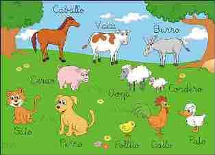 ANIMALES Y SU SALUD: TERAPIA FACILITADA POR MASCOTAS
